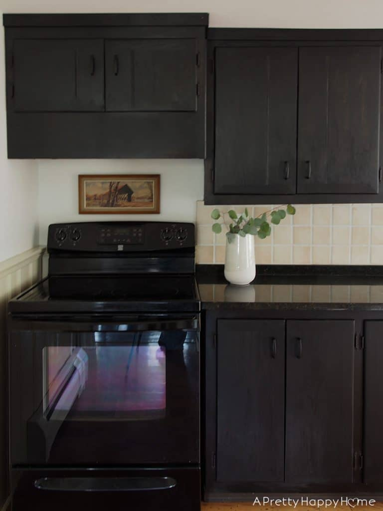 Kitchen Mini Makeover black stained cabinets