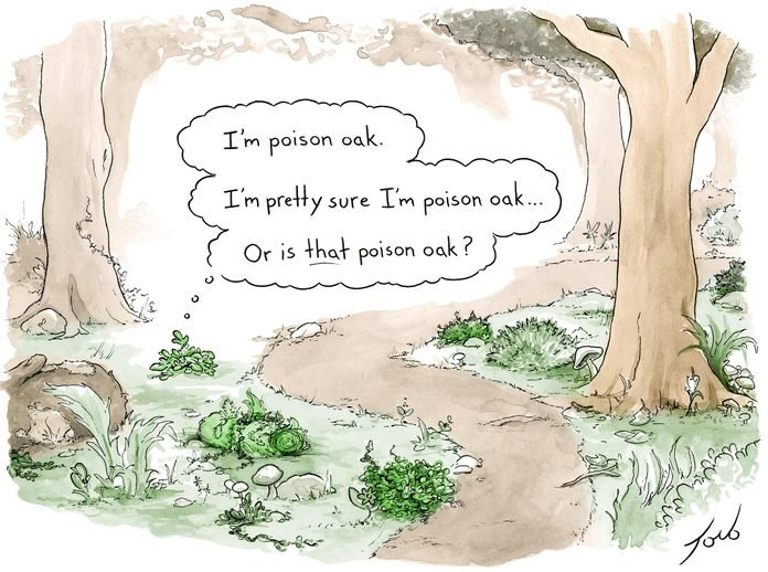 POISON OAK CARTOON TORO CARTOONCOLLECTIONS.COM VIA READERS DIGEST ON THE HAPPY LIST